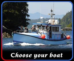 choose your boat